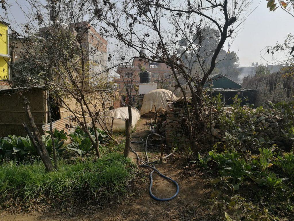 workaway-nepal
