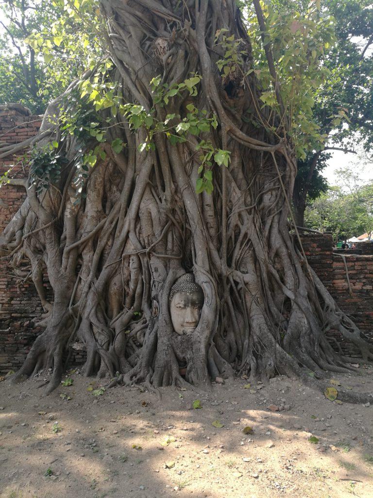 visiter_ayutthaya
