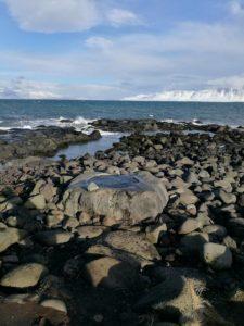 source-chaude-en-islande